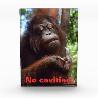 No Cavities Dentist Award for Children Awards