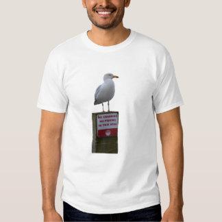 No Crabbing No Fishing Sign Seagull Looe Cornwall T-Shirt
