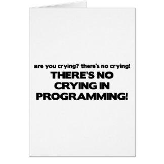 No Crying in Programming Greeting Card