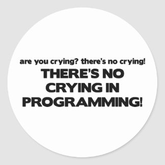 No Crying in Programming Sticker