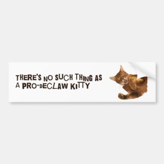 No Declaw Kitty Bumper Sticker