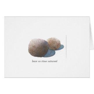 No deje ninguna piedra unturned tarjeta de felicitación