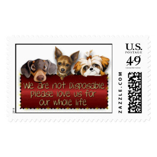 No disponible sello postal