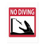 No Diving (Mosasaurus) Postcard