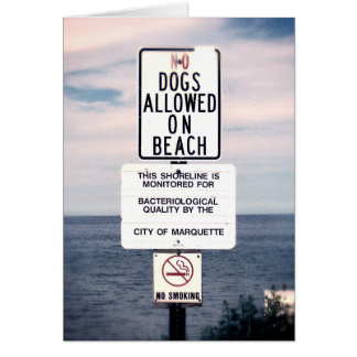 No Dogs Allowed On Beach Card