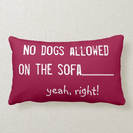 No Dogs Allowed Throw Pillow Zazzle