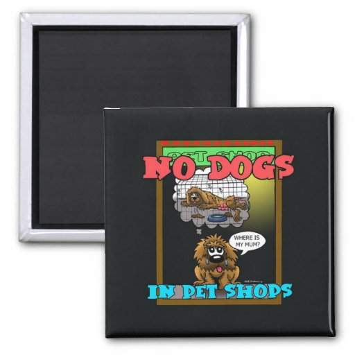 NO DOGS IN PET SHOPS MAGNET