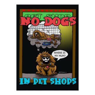 NO DOGS IN PET SHOPS POSTER
