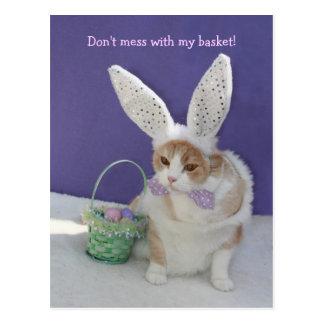 ¡No ensucie con mi cesta! Postales