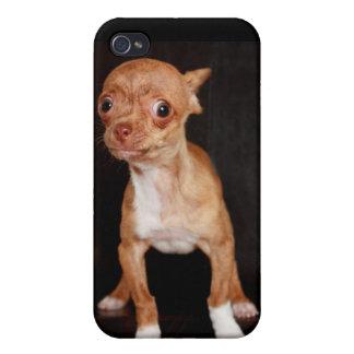 ¡No ensucie conmigo! iPhone 4/4S Fundas