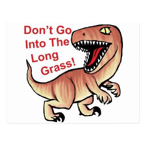 ¡No entre la hierba larga! Rapaz Postal