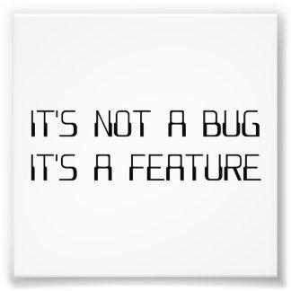 No es un insecto de la codificación que es una fotografías