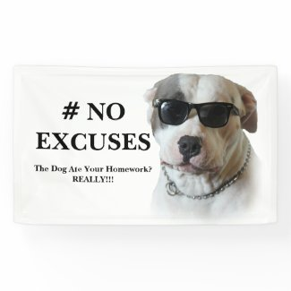 No Excuses Banner