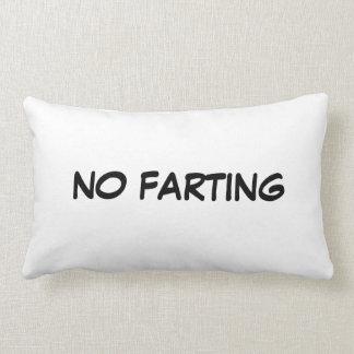 No Farting Lumbar Pillow