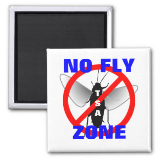 No Fly Zone 2 Inch Square Magnet