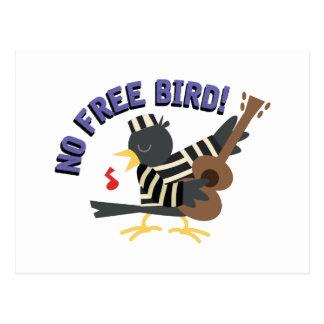 No Free Bird Postcard