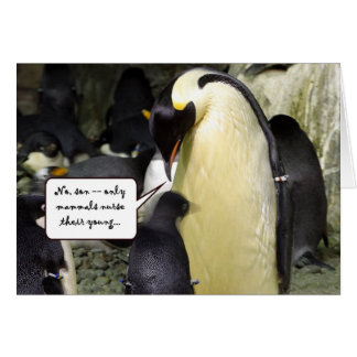 No Free Lunch Penguin Greeting Card