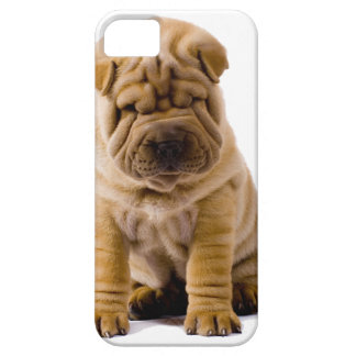 No frowns today! iPhone SE/5/5s case