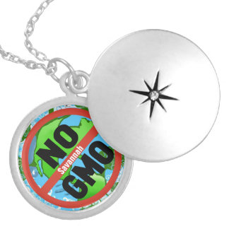 NO GMO SILVER PLATED NECKLACE