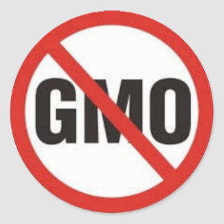No GMO Symbol.jpg Classic Round Sticker