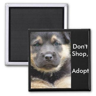¡No haga compras adoptan! imanes del shep Imán Cuadrado