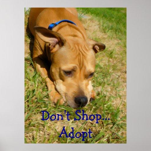 No haga compras… adoptan posters