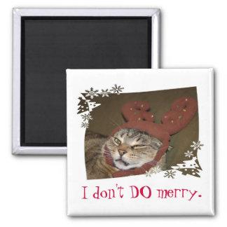 NO HAGO feliz.  ¡Gato con el imán de las astas!!