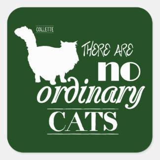 No hay gatos ordinarios pegatina cuadrada