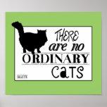 No hay gatos ordinarios - todos los colores posters