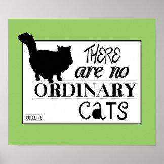 No hay gatos ordinarios - todos los colores póster