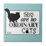 No hay gatos ordinarios - todos los colores tejas