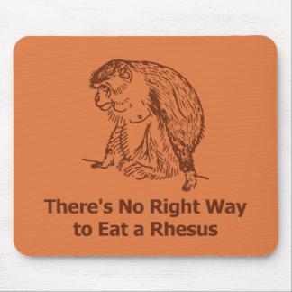 No hay manera correcta de comer un macaco de la In Tapetes De Raton