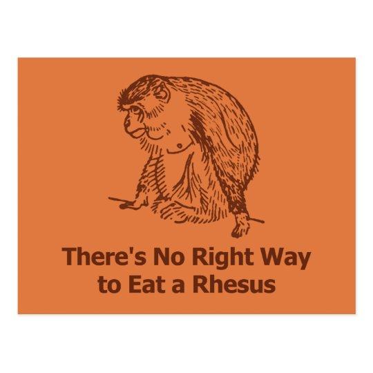 No hay manera correcta de comer un macaco de la postales