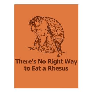No hay manera correcta de comer un macaco de la tarjeta postal