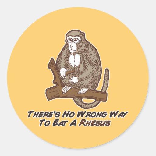 No hay manera incorrecta de comer un macaco de la pegatina redonda