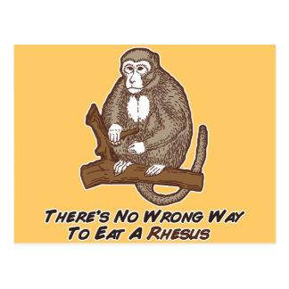 No hay manera incorrecta de comer un macaco de la postal