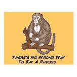 No hay manera incorrecta de comer un macaco de la  tarjetas postales
