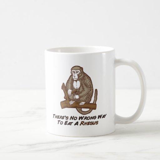 No hay manera incorrecta de comer un macaco de la  taza de café