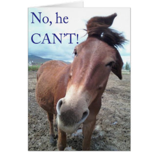 No he CAN'T! Donkey Card