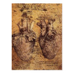 No higher resolution available. Heart_and_blood_ve Post Card