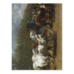 No higher resolution available. Rosa_bonheur_horse Postcard