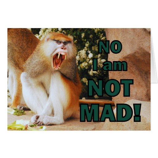 No I am NOT MAD! Cards