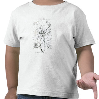 No III mapa conjetural de la isla de Camisetas