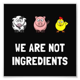 No ingredientes cojinete