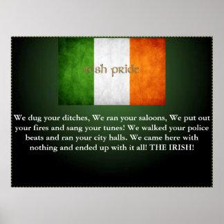no irish need apply irish pride poster