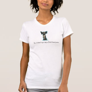 No, it didn't hurt when I fell from heaven Tee Shirt