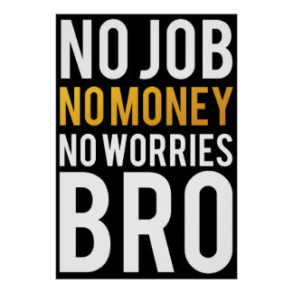 No job, No money, No worries BRO Poster
