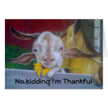 NO KIDDING I'M THANKFUL FOR YOU GREETING CARD