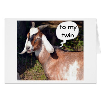 NO KIDDING SAYS GOAT-HAPPY BIRTHDAY TWIN CARD