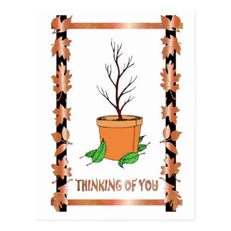 No leaves on the pot plant postcard